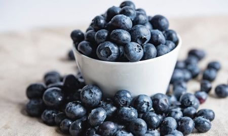 blueberry-4